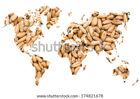 World Map Wheat Grains Isolated On White - stock photo