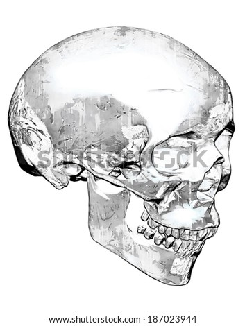 Worn and Dirty Grunge Skull In Black And White - stock photo