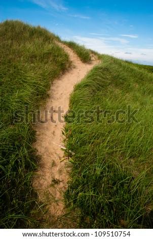 Worn Path through grasses on PEI sand dune - stock photo