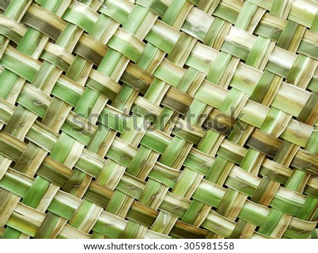 Woven green coconut leaves texture - stock photo