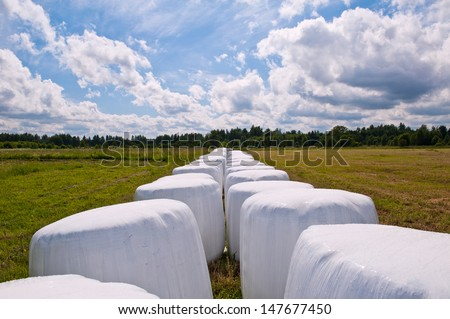 Wrapped bales (haylage) on the field - stock photo