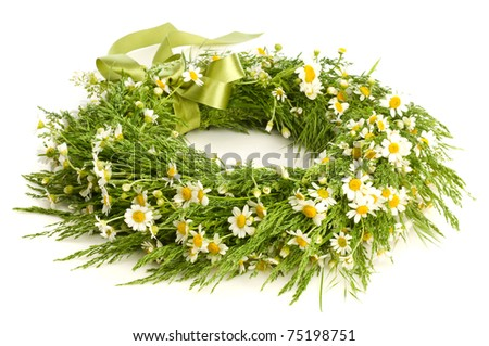 Wreath From Camomile isolated on white - stock photo