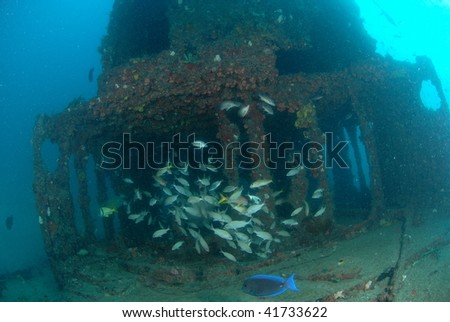 wreck diving with reef fish - stock photo