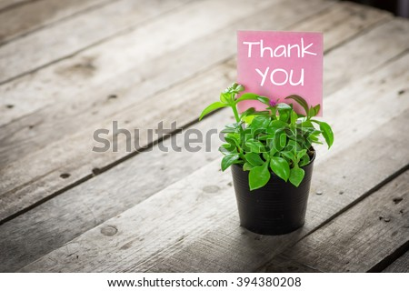 writing thank you on card and ornamental plants in pots on wooden floor.