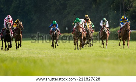 WROCLAW, POLAND - AUGUST 10; 2014: Finish the race for - three year old horse for the Prize Lira (Oaks) in a Racecourse WTWK Partynice. - stock photo
