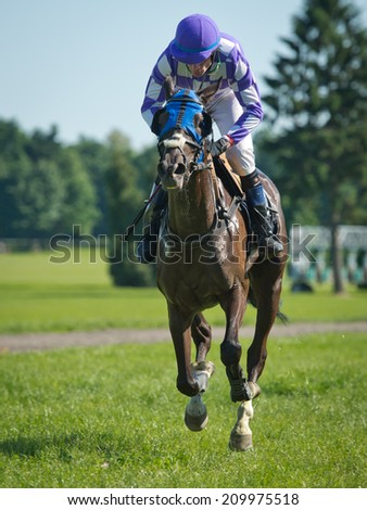 WROCLAW, POLAND - JUNE 8, 2014: P. Debowski on a horse  Krewetka finishes in the international race for the prize of the President of Wroclaw in a Racecourse Partynice. - stock photo
