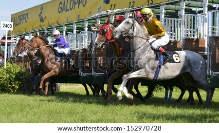 WROCLAW, POLAND - JUNE 23: Start in the international race for the prize of the President of Wroclaw in a Racecourse Partynice on June 23,2013 in Wroclaw, Poland.  - stock photo