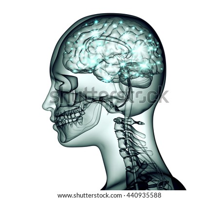 x-ray image of human head with brain and electric pulses, 3d illustration - stock photo