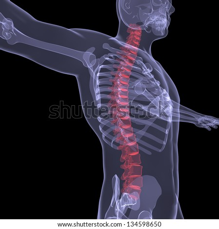 X-ray of the human spine. Render on a black background - stock photo