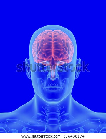 x-ray scan of human body with visible brain front view - stock photo