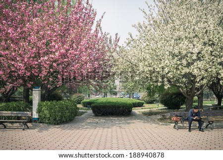 XI'AN, CHINA -- APRIL 5, 2014: A man sitting in the park, concentrating on mobile phone