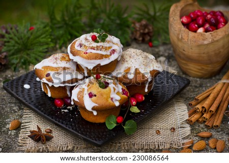 Xmas cakes with cranberries - stock photo