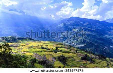 Y TY, LAOCAI, VIETNAM - SEPTEMBER 6, 2014 - Rice terraces on the mountain. Here is a famous tourist attraction, rice terraces and H'Mong ethnic people. - stock photo