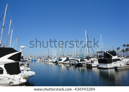 Yachts and sailboats at harbor with blue sky and palm trees in Long Beach, Los Angeles, CA. - stock photo