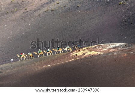 YAIZA, SPAIN - NOV 15, 2014: tourists on a camel safari in Timanfaya National Park in Yaiza, Spain. Camel riding in Timanfaya is a must for tourists. - stock photo