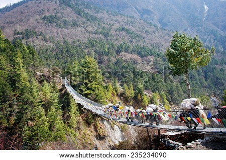 Yak on the bridge near Everest Base Camp in Nepal  - stock photo