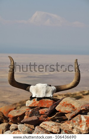 Yak skull decorated with Buddhist mantras with Gurla Mandhata mountain on background, Tibet - stock photo