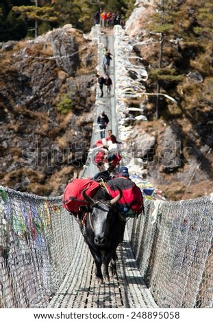 Yaks and people on hanging suspension bridge on the way to Mount Everest base camp near Namche Bazar - Nepal - stock photo