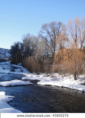 Yampa River and cottonwoods in winter,   Steamboat Springs,  Colorado - stock photo