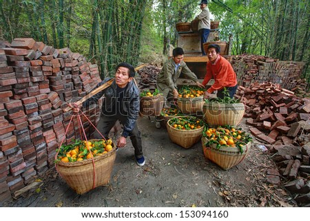 YANGSHUO, GUANGXI, CHINA - MARCH 29: Fruit business in south-western China, March 29, 2010. Chinese farmer transports two baskets with oranges, using a wooden yoke. - stock photo