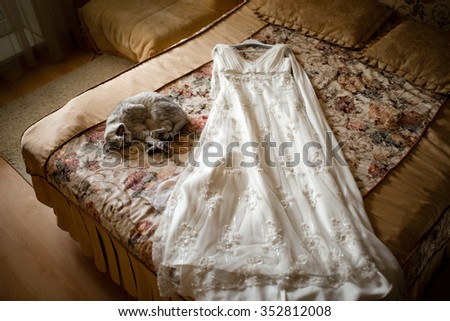 Yawning cat next to the wedding dress on the bed - stock photo