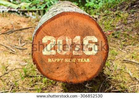 year 2016 written with vintage letterpress printing blocks on rustic wood background - stock photo