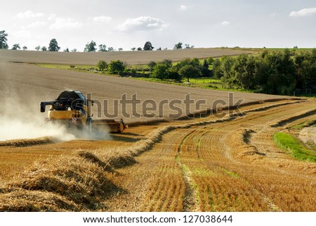 Yellov combine on field harvesting wheat in sunny weather - stock photo