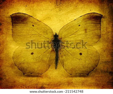 Yellow and brown grunge butterfly background - stock photo