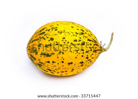 Yellow and Green Speckled Santa Claus Melon on a plain white background