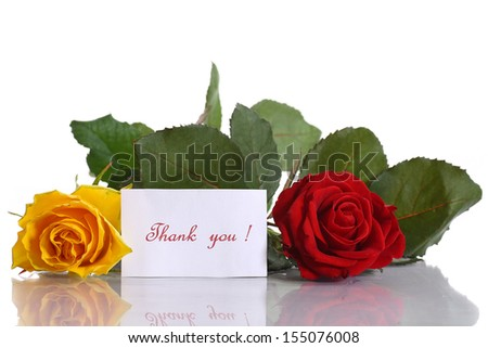 yellow and red roses on a white background - stock photo