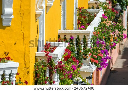 Yellow and white balconies covered in vibrant bougainvillea flowers in Cartagena, Colombia - stock photo