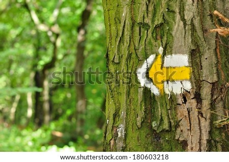 Yellow and white hiking trail signs symbols in spring on tree  - stock photo