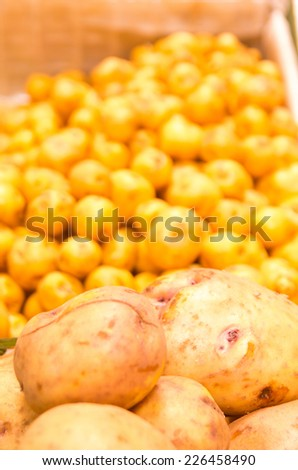 yellow andean potatoes piled in market selective focus - stock photo