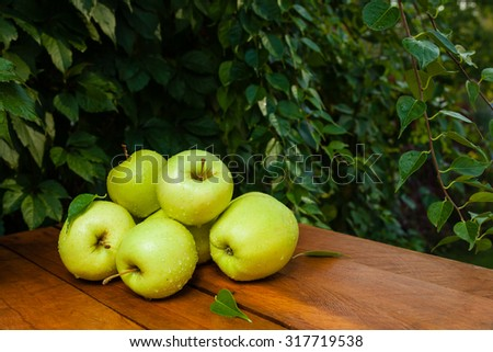 Yellow apples in the village against the backdrop of greenery