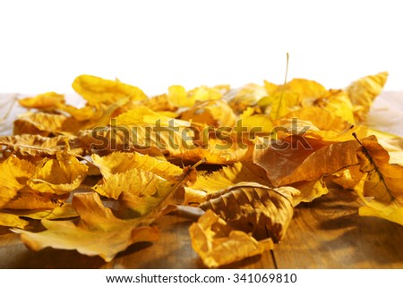 Yellow autumn leaves on wooden table, isolated on white - stock photo