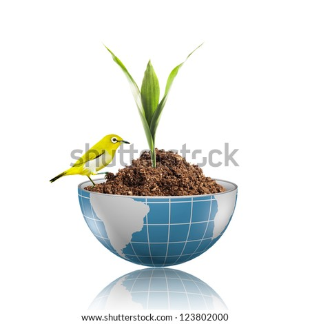 Yellow bird on globe with plant growing on dirt