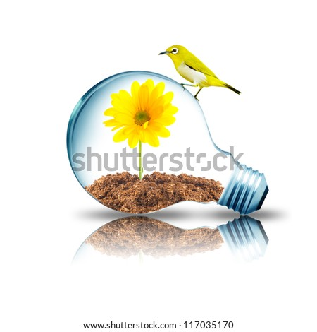Yellow bird on Light bulb with yellow flower inside - stock photo