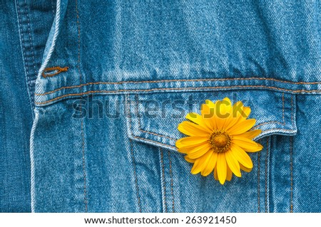 Yellow blossom in button hole of jeans jacket - stock photo