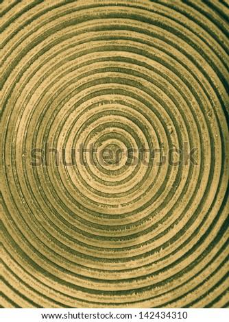yellow circular bowl - stock photo