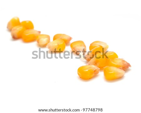 yellow corn grain on white background - stock photo