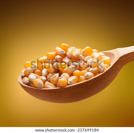 Yellow corn in a wooden spoon / kernels on wooden spoon isolated on golden background  - stock photo