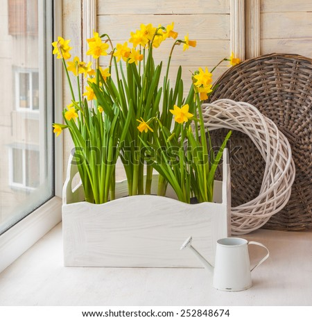 Yellow daffodils in balcony boxes for flowers and decorative watering can on the balcony - stock photo