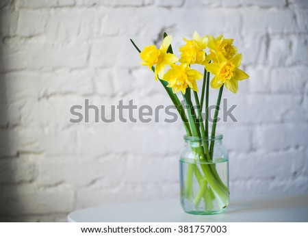 yellow daffodils in glass jar white brick wall background