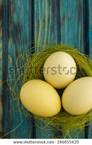 Yellow Easter eggs in a nest over blue background - stock photo