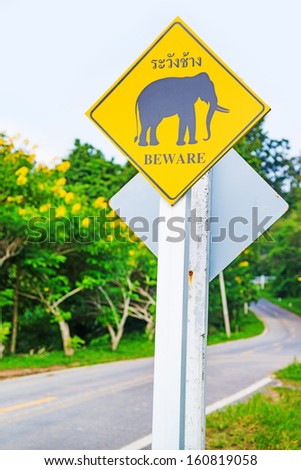 Yellow Elephant wanring sign on the road  - stock photo