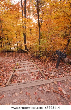Yellow fall foliage along a hiking path with sign vertical