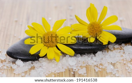Yellow flower and stones with pile salt on board