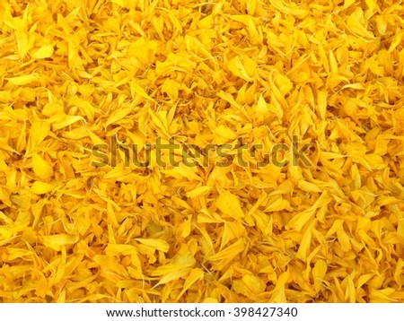 Yellow flower carpet made from marigold petals in Thailand - stock photo