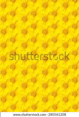 Yellow flower for background. - stock photo