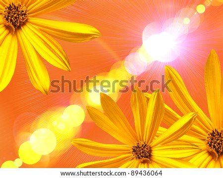 Yellow flower on lighten background
